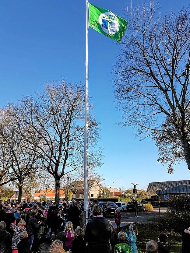 Det Grønne Flag foldede sig smukt ud mod den blå himmel Foto: Karl Erik Hansen