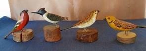 Chr. Baks fugle på museum
