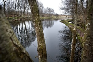 St. Restrup vil med i byggeboom: Fællesjord og dyrehold skal tiltrække familier