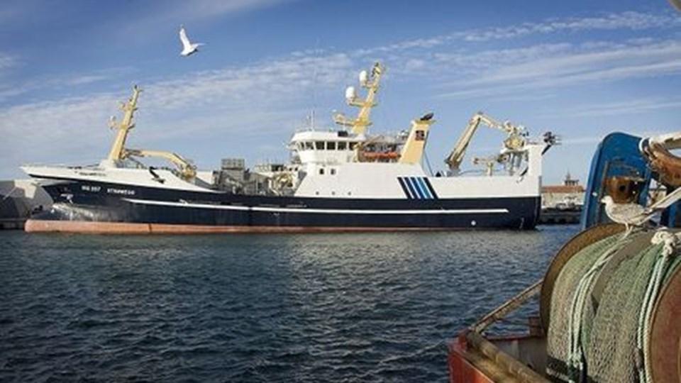 Det nye kombinerede nottrawlfartøj ¿Strømegg¿ til Skagerak Fiskeeksport A/S er netop blevet leveret fra Karstensens Skibsværft A/S i Skagen. Fartøjet bliver døbt på Hirtshals Havn i dag. foto: Peter Broen