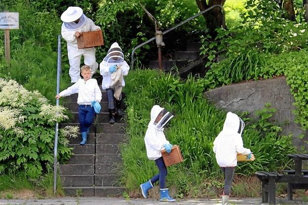Børnene hygger sig med at passe bier. Privatfoto Picasa