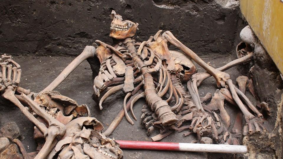 Midt i Aalborg har arkæologer fra Nordjyllands Historiske Museum fundet skeletdele fra 10 forskellige mennesker i, hvad der helt tydeligt er en massegrav med ofre for en voldsom kamphandling. Massegraven er sandsynligvis fra 1534, hvor der var voldsomme kamphandlinger ved Aalborg under borgerkrigen Grevens Fejde. Foto: Nordjyllands Historiske Museum