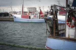 Skagenfiskere overvejer fusion