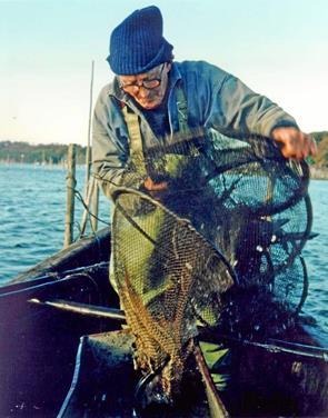 Hyggeligt filmgensyn med to ålekrogsfiskere