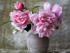 Forkæl mor med blomster på mors dag