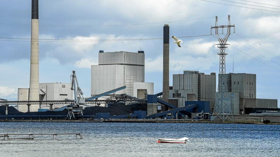 Kommunen fulgte ikke råd fra rådgiver om at få en valuarvurdering af stort areal, før man solgte det til Aalborg Havn A/S. Arkivfoto: Michael Koch
