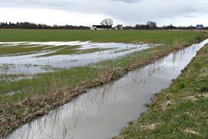 Vandmasser oversvømmer veje og kældre i Sydøstjylland