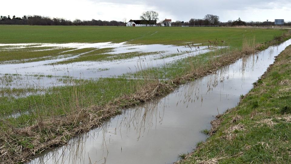 Der meldes om oversvømmelser flere steder i Jylland og på Fyn efter et voldsomt regnvejr fredag. (Arkivfoto)